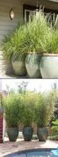 nice outdoor plant pots modern planters great ideas for design