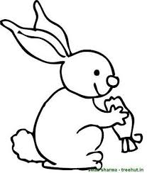rabbit eating carrot coloring sheet coloring pages