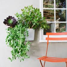 Self Watering Vertical Garden 0 Living Walls