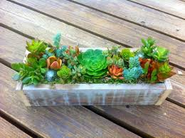 succulent centerpieces 24 succulent centerpieces for your reception table weddingomania