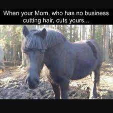 Really Funny Memes - really funny memes humor that will make you laugh 23 owless
