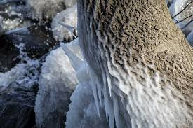 wind crafted icicles of mendota