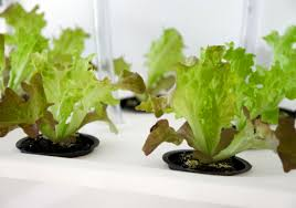Ikea Hydroponics Garden Diy Eliooo Manual Shows How To Build Your Own Hydroponic Garden