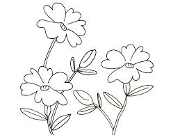 2014 printable coloring page of flowers for preschoolers