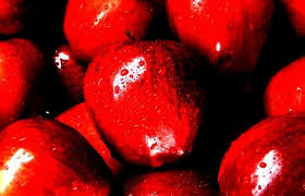 the awful reign of the red delicious the atlantic