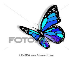 stock illustrations of colorful butterfly k3542230 search
