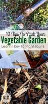374 best outdoor garden images on pinterest organic gardening