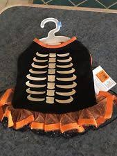 Martha Stewart Dog Halloween Costumes Martha Stewart Skeleton Costumes Dogs Ebay