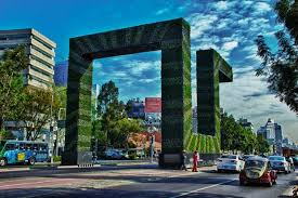vertical gardens pollution fighting vertical gardens rise in mexico city zdnet
