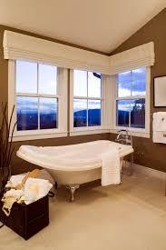 Basement Window Cover Ideas - elegant window valancein bathroom traditional with graceful