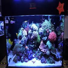 best lighting for corals 50w 100w aquarium light for coral diy 100w multichips led aquarium