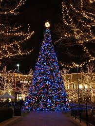 Family Garden Columbus Square Top 6 Places To See Christmas Lights In Columbus Ohio