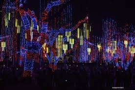 and the lights dance to the music the ayala triangle lights and