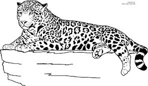 geography blog jaguar coloring pages