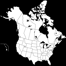 Fill In The Blank Europe Map Quiz by Blank Canada Map Prepossessing Map Of Canada Fill In The Blanks