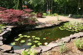 Backyard Pond Images 37 Backyard Pond Ideas U0026 Designs Pictures