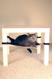 hammocks for cats cat hammocks pethelpful