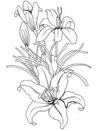 coloring pages for printing pages flowers flowers coloring pages best page flower printable