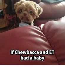 Chewbacca Memes - if chewbacca and et had a baby chewbacca meme on awwmemes com