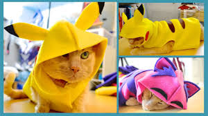 how to make a banana costume for halloween turn your pet into pikachu cat u0026 dog costume youtube