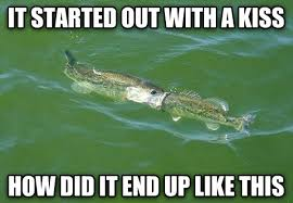 fish pictures with captions go gallery