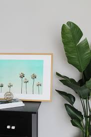Palm Tree Bathroom Rugs by Palm Tree Print Framed How To Do Banana Leaf Plant Indoors