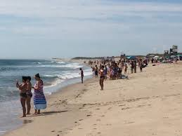 swimmers called from water at nauset because of sharks news