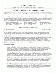 Credit Risk Business Analyst Resume Business Analyst Resumes Best Ideas Of Sample Senior Business