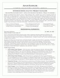 It Business Analyst Job Description Resume Business Analyst Resumes Best Ideas Of Sample Senior Business