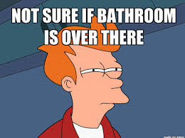 Sure Meme - fry is not sure where the bathroom is located in animated not sure