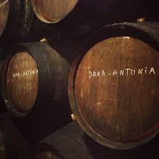 Wine Cellars Porto - 251 best cidade porto images on pinterest travel places and