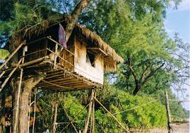 famous tree houses quirky hotels around the world blog archive alpharooms com nipa
