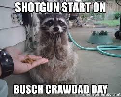 Meme Generator Raccoon - shotgun start on busch crawdad day surprised raccoon meme