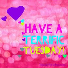 Happy Tuesday Meme - value each day because you can goodmorning terrifictuesday