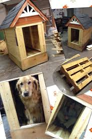 34 best dog backyard ideas images on pinterest animals dog