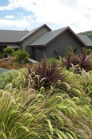 Ornamental Home Design Inc by 90 Best Grasses Images On Pinterest Ornamental Grasses Garden