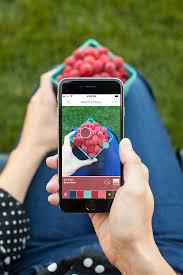colorsnap phone app makes choosing paint colors easy the
