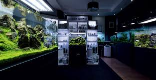 Aquascaping Shop World Report In Hungary By Viktor Lantos Green Aqua Llc