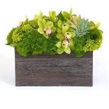 flowers for men flowers for men nyc designer florist high end men s arrangements