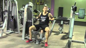 chest press machine hasfit machine exercises machine exercise