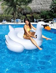 international leisure giant swan amazon in garden u0026 outdoors