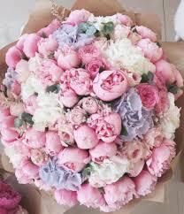 peonies flowers riesiger pfingstrosen strauß in verschiedenen pastell tönen