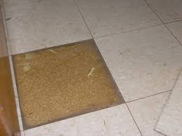 Can You Lay Tile Over Laminate Flooring Vinyl Tile On Particleboard The Floor Pro Community