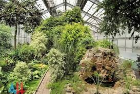 siege social botanic 50th anniversary of the donetsk botanical gardens one of largest in