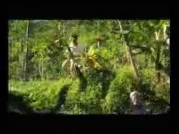 film merah putih 3 full movie download film indonesia merah putih 3 cinema gaumont st denis reunion