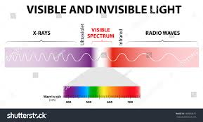 infrared and ultraviolet light spectrum waves includes infrared rays visible stock vector hd