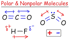 Image of Non polar molecules