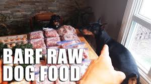raw dog food diet barf for dogs vlog biologically appropriate