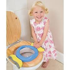 Potty Seat Or Potty Chair Best 25 Portable Potty Seat Ideas On Pinterest Portable Potty