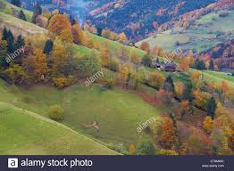farmhouses in obermuenstertal in autumn southern part of the